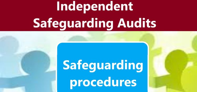 Publication of Independent Audits